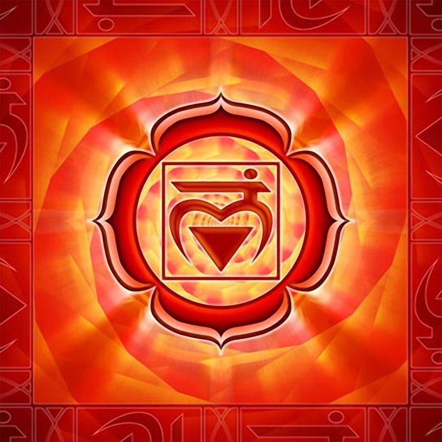 Первая чакра — Муладхара